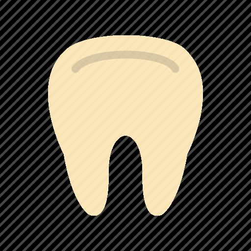 care, clean, dental, dentist, teeth, tooth, white icon