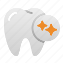 clean, dental, dentist, health, hospital, teeth, tooth