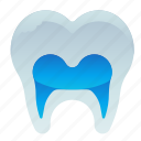 dental, dentist, root, teeth, tooth icon