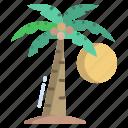 palm, tree