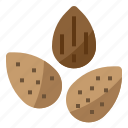 almond, diet, nut, nutrition icon