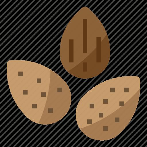 almond, diet, nut, nutrition icon