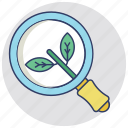 natural seo, organic search, organic search engine, organic seo, seo green icon