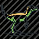 dino, dinosaur, species, velociraptor icon