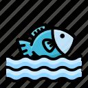 disaster, drowning, emergency, fish, flood, rain
