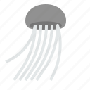 fish, jelly, jellyfish icon