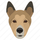 animal, bull terrier, dog, dog breed, miniature bull terrier icon