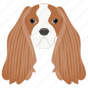 afghan hound, badger dog, dachshund, sausage dog, wiener dog icon