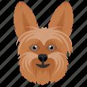 animal, cartoon dog, domestic animal, pom, pomeranian dog icon