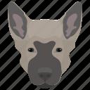 alaskan malamute, animal, dog, dog breed, domestic dog icon