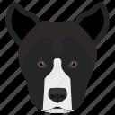 american staffordshire, amstaff, animal, dog, dog breed icon