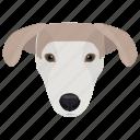 animal, dog, labrador, labrador retriever, retriever-gun dog icon