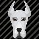 animal, cattle dog, dog, dog breed icon