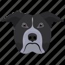animal, dog, dog breed, fighting dog, pit bull icon