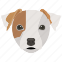 animal, basset hound, companion dog, dog, dog breed icon