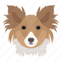 animal, companion dog, dog, toy dog, yorkshire terrier icon