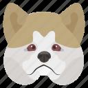 animal, chow chow, dog, dog breed, puffy-lion dog icon