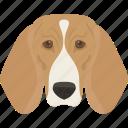 animal, beagle dog, companion dog, dog, domestic animal icon
