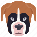 animal, boxer dog, dog, domestic animal, molossers icon