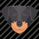 animal, dog, dog breed, english mastiff, fighting dog icon