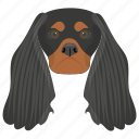 animal, dog, dog breed, english cocker, sporting dog icon