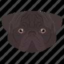 animal, dog, domestic animal, fighting dog, staffordshire bull icon