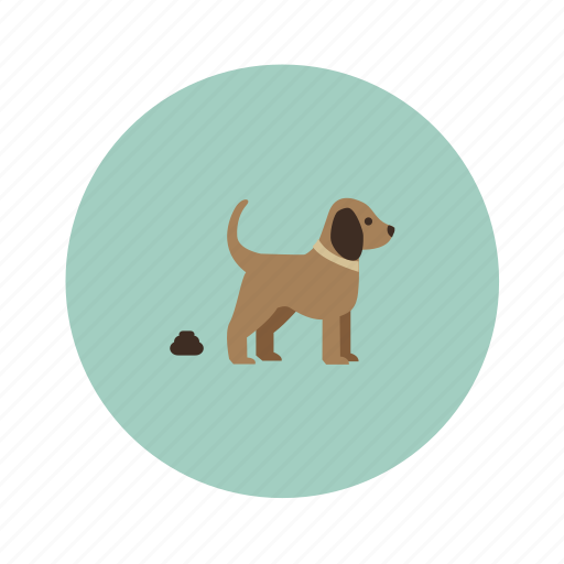 animals, dog, pet icon