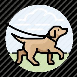 animal, dog, dogs, labrador retriever, pet, yellow lab icon