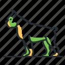 boxer, breed, canine, dog icon