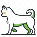 breed, canine, chihuahua, dog icon