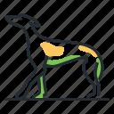 breed, canine, dog, greyhound icon