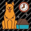 dog, care, food, time, feed, feeding, dogfood