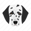 animal, breed, dalmatian, dog, domestic, muzzle, pet icon
