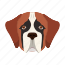 animal, breed, dog, domestic, pet, st. bernard icon