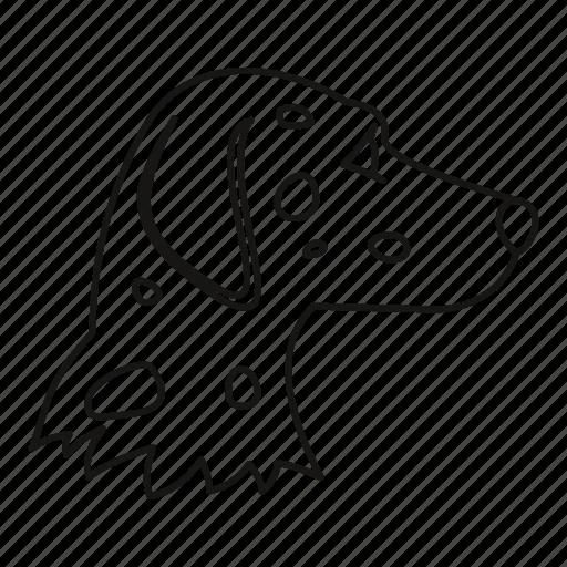 animal, dalmatians, dog, line, outline, pet, puppy icon