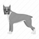 animal, boxer, breed, dog, domestic, mammal, pet icon