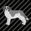 animal, breed, dog, domestic, mammal, pet, st. bernard icon