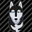 animal, dog, pet, siberian husky icon
