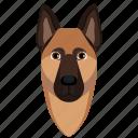 animal, dog, german shepherd, pet