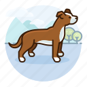 boxer, dog, doggy, dogs, pet, puppy icon