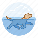 dog swimming, dogs, labrador retriever, pet icon
