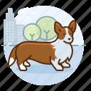 corgi, dog, doggy, dogs, pet, puppy icon