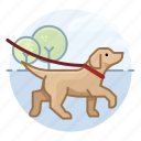 dog walking, dogs, labrador retriever, pet icon