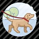 canine, dog, dog walking, dogs, labrador retriever, pet icon
