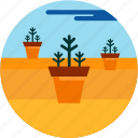 cloud, desert, good, plant, planting, pot icon
