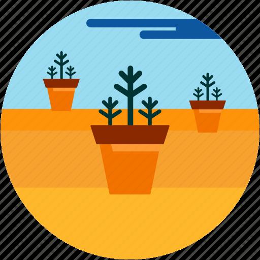 cloud, desert, good, plant, planting, pot icon