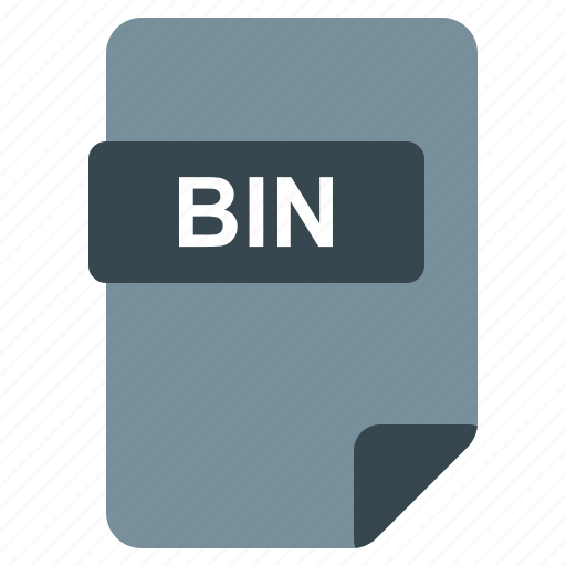 Bin, file, format, type icon - Download on Iconfinder