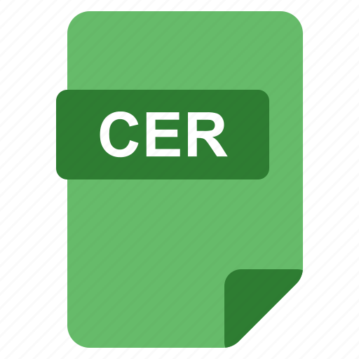 cer, file, format, type icon