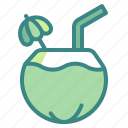 beverage, coconut, drink, food, fruit, juice, milk icon