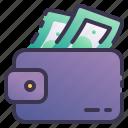 wallet, payment, cash, banknote, balance